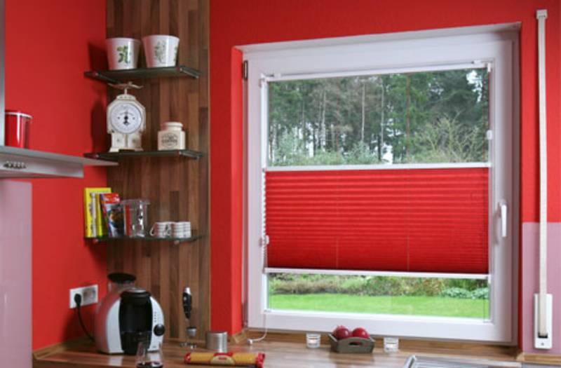plissee reinigung top with plissee reinigung amazing plissees reinigen with plissee reinigung. Black Bedroom Furniture Sets. Home Design Ideas